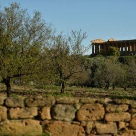 Natura e Cultura di Sicilia