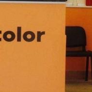 DG Edili Color Srl